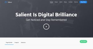 Salient WordPress Theme, Responsive WordPress Theme